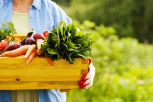 Persona con caja de verduras en la mano